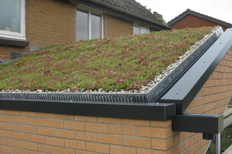 Single storey extension at Bradley Stoke. Detail of sedum roof